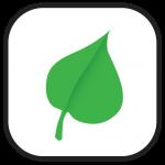 Eco-friendly Leaf Icon
